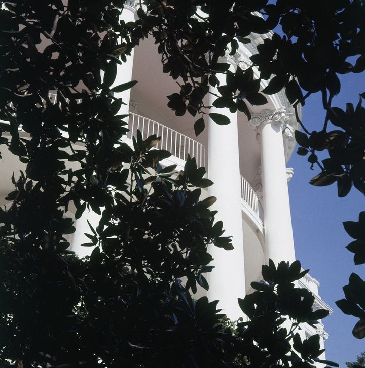 The south portico of the White House is framed by a Magnolia grandiflora planted by Andrew Jackson in memory of his wife.