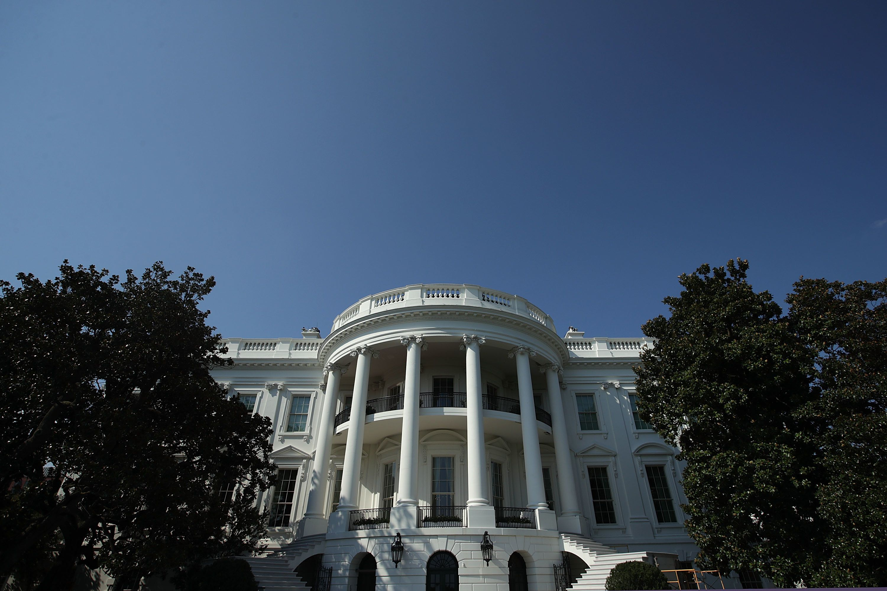 White House says historic magnolia tree has been cut back