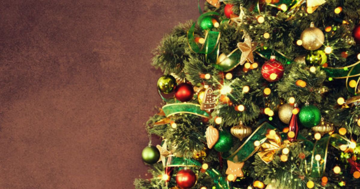 How To Dispose Of Your Christmas Tree Sustainably ...