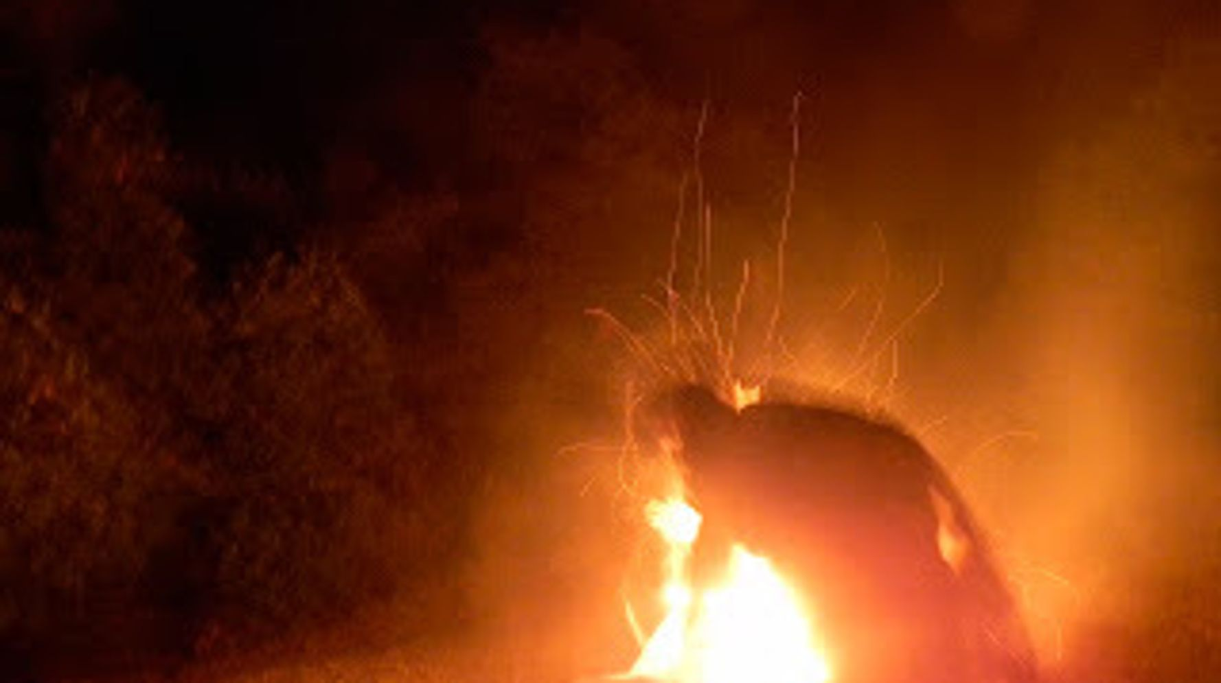 Camping In Ojai: The Magic Madness Of A Camp Fire   HuffPost