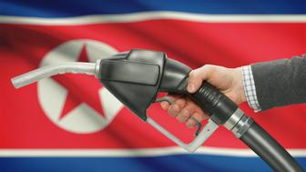 Fuel pump nozzle in hand with flag on background - North Korea