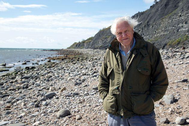David Attenborough Says He'll Retire When He Can No Longer Climb The