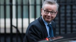 Michael Gove Pledges To Replace EU Common Agricultural Policy With 'Green