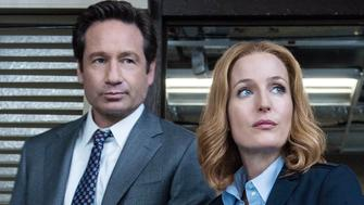 """THE X-FILES:   L-R:  David Duchovny and Gillian Anderson in the """"Home Again"""" episode of THE X-FILES airing Monday, Feb. 8 (8:00-9:00 PM ET/PT) on FOX.  �2016 Fox Broadcasting Co.  Cr:  Ed Araquel/FOX"""