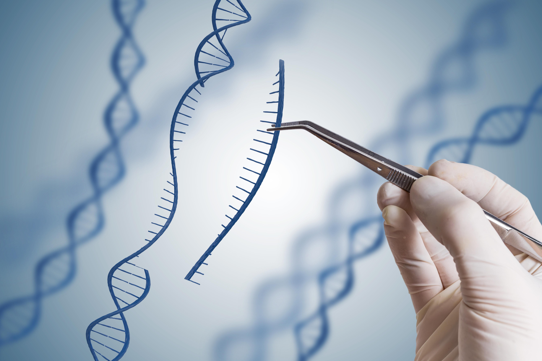 Η ανάλυση του DNA της μεσαιωνικής μούμιας ενός παιδιού αποκάλυψε ότι είχε ηπατίτιδα