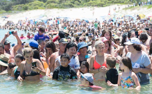 Crowdscool off in water at Yarra Bay in Sydney,Australia, on Sunday amida heat