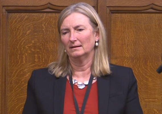 Dr Sarah Wollaston in the House of