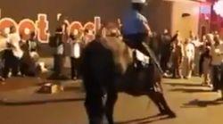 Στη Νέα Ορλεάνη έχουν τόσο ρυθμό, που ακόμη και τα άλογα χορεύουν