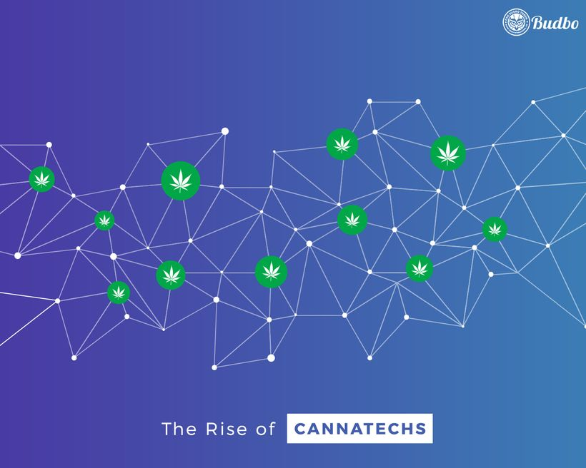 <strong>The Rise of Cannatechs</strong>