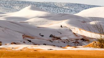 Mandatory Credit: Photo by Geoff Robinson Photography/REX/Shutterstock (9309883g)