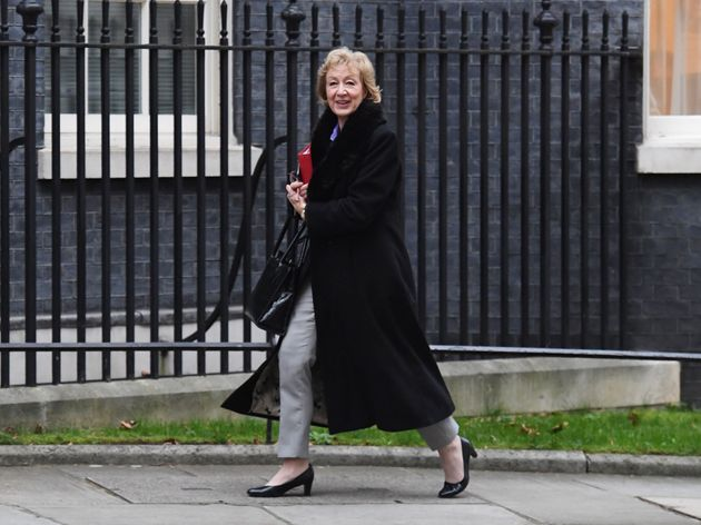 Commons Leader Andrea Leadsom has been examining the procedures in place to protect staff at