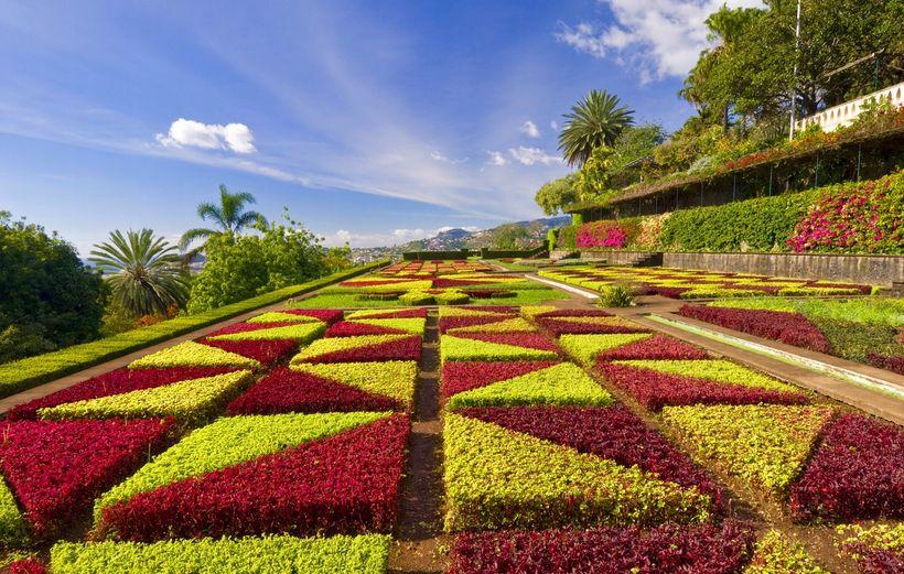 Madeira is a classic winter sun destination