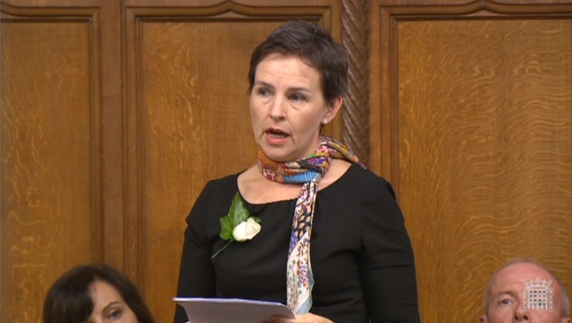 <strong>Labour MP and environment committee chair Mary Creagh: 'The effects of air pollution tend to be magnified in poorer groups'</strong>