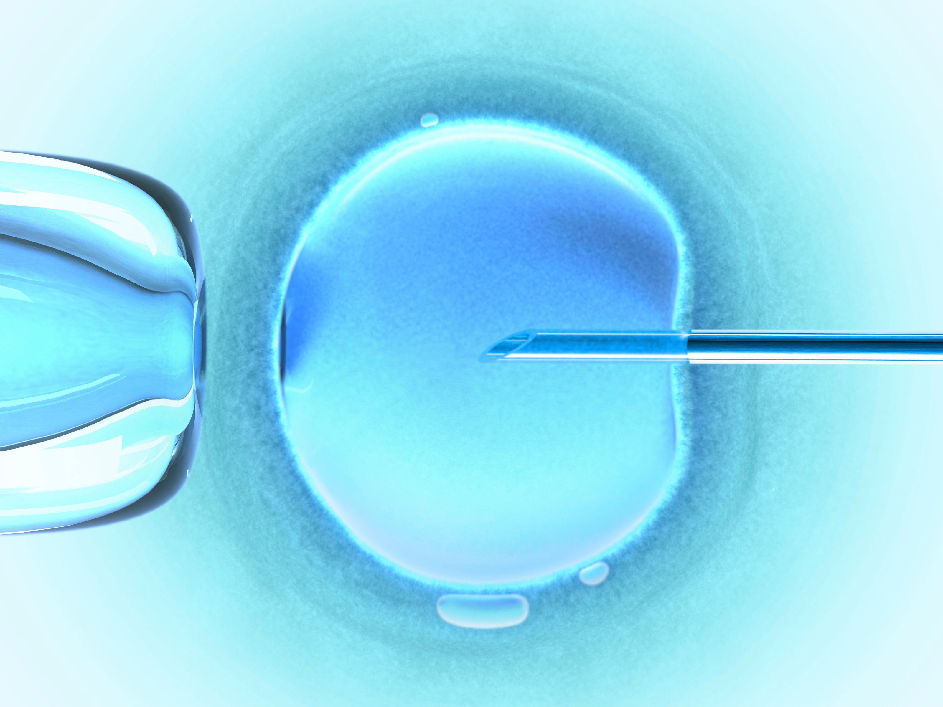 Frozen embryos just as effective as fresh alternative in IVF treatment
