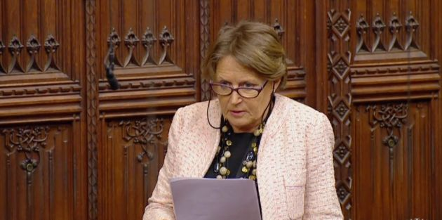 Baroness Jenkin wanted togive a 'real world example' of the abuse received by