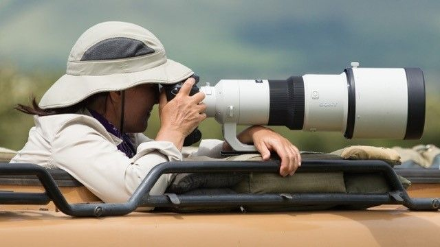 "<a rel=""nofollow"" href=""https://www.wild4photographicsafaris.com/"" target=""_blank"">Wild4 African Photographic Safaris</a>"