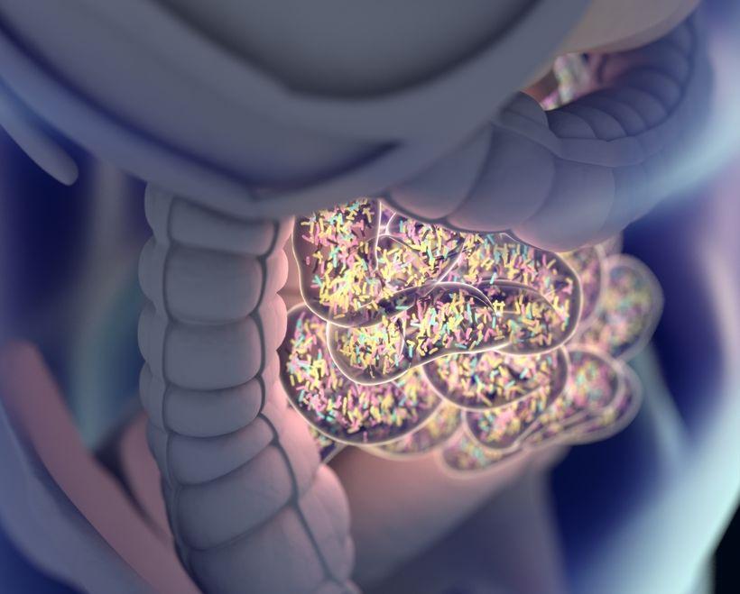 Gut health is often overlooked when treating sleep issues