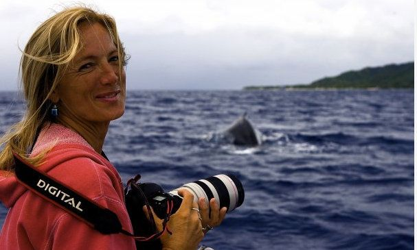 A Humpback Whale Tucked Me Under Its Fin And Saved Me From A Lurking Tiger