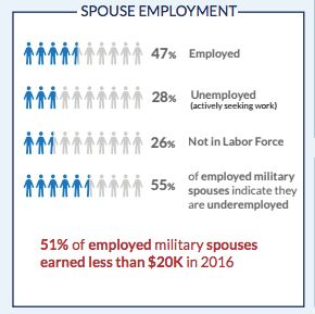 From the 2017 Blue Star Families Military Lifestyle Survey