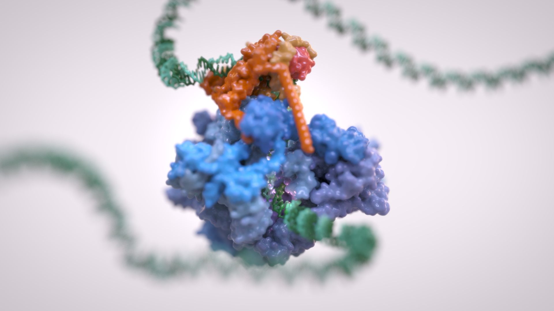 For The First Time, Scientists Have Watched DNA Being 'Transcribed' In