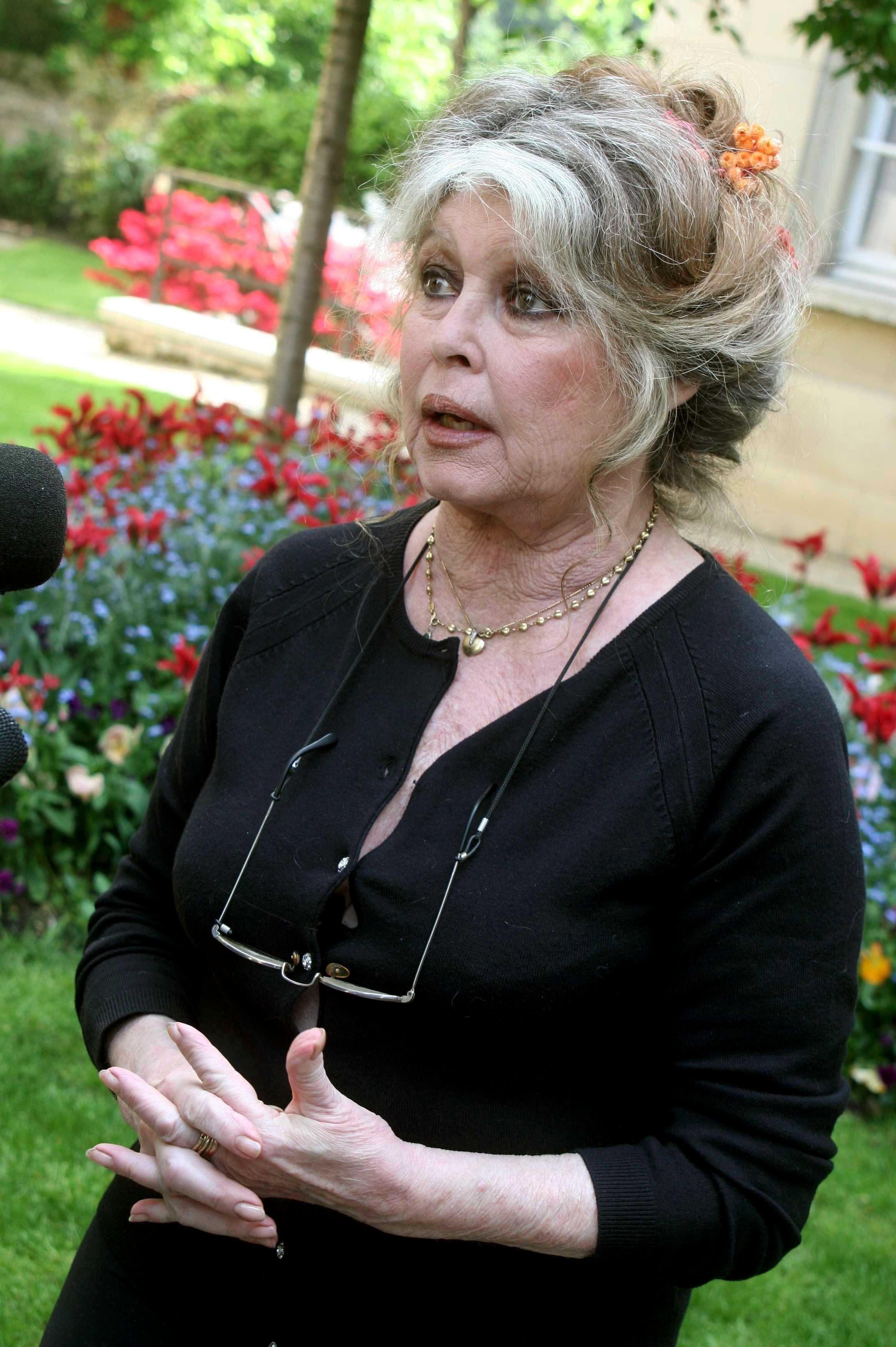 <strong>Brigitte Bardot in 2006</strong>