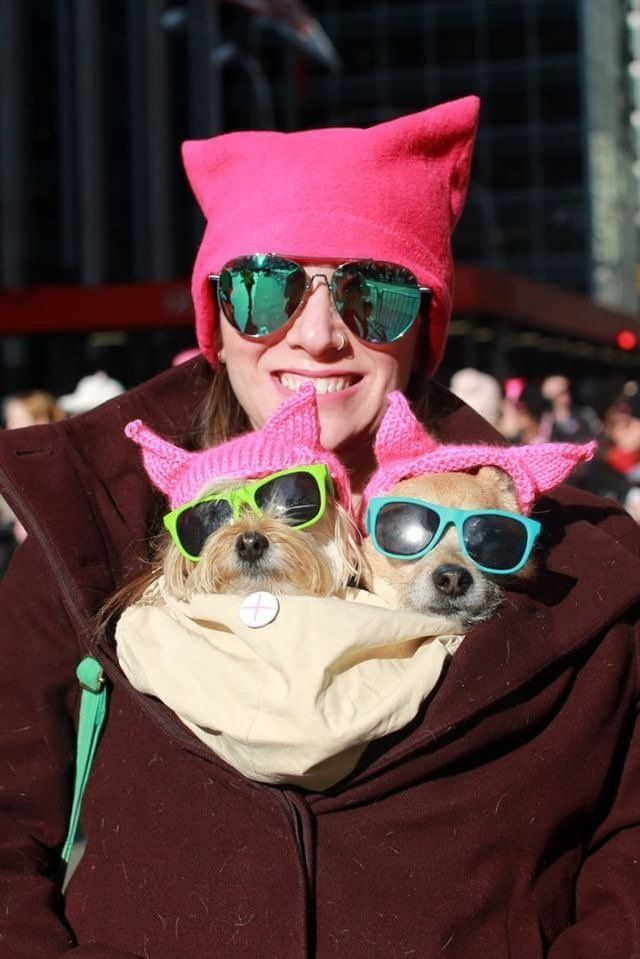 Hannah Stampleman with dogs Simba and Pippin looking stylish at the NYC Women's March.