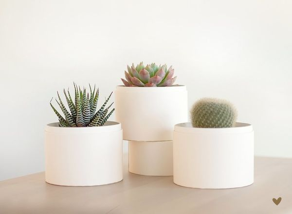 "For those with a green thumb, speak to their plant soul and get them the gift of <a href=""https://www.lulasgarden.com/"" targe"