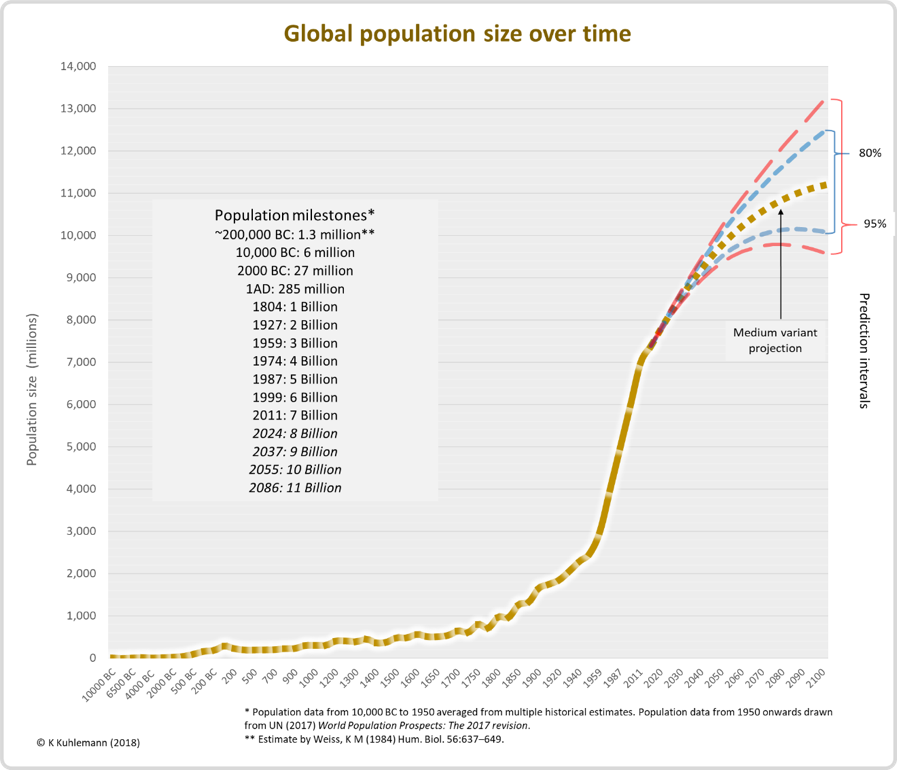 We Can't Tackle Overpopulation When The Time Comes - We Need To Talk About It