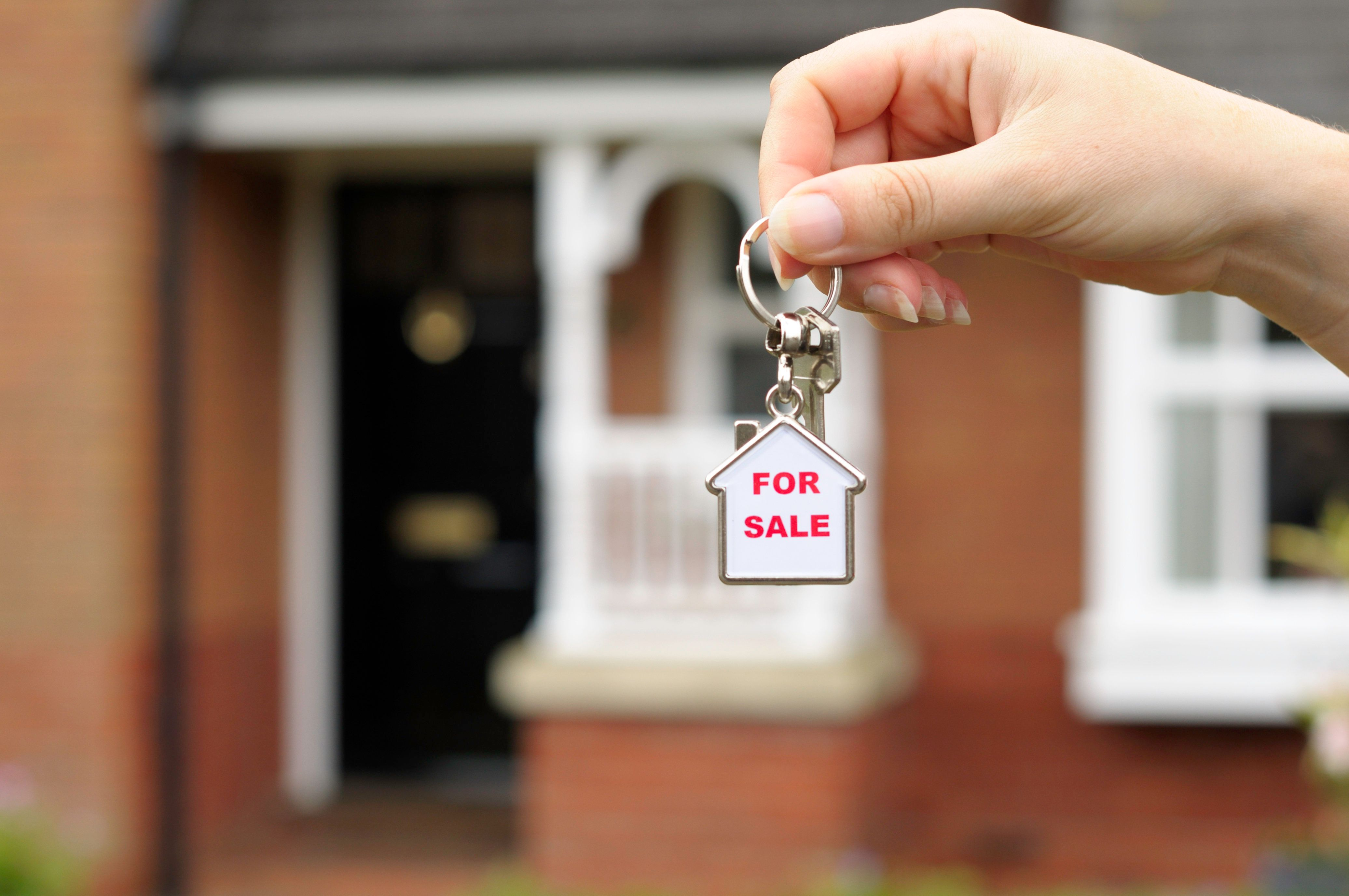 What You Really Need To Know Before You Pick A Real Estate