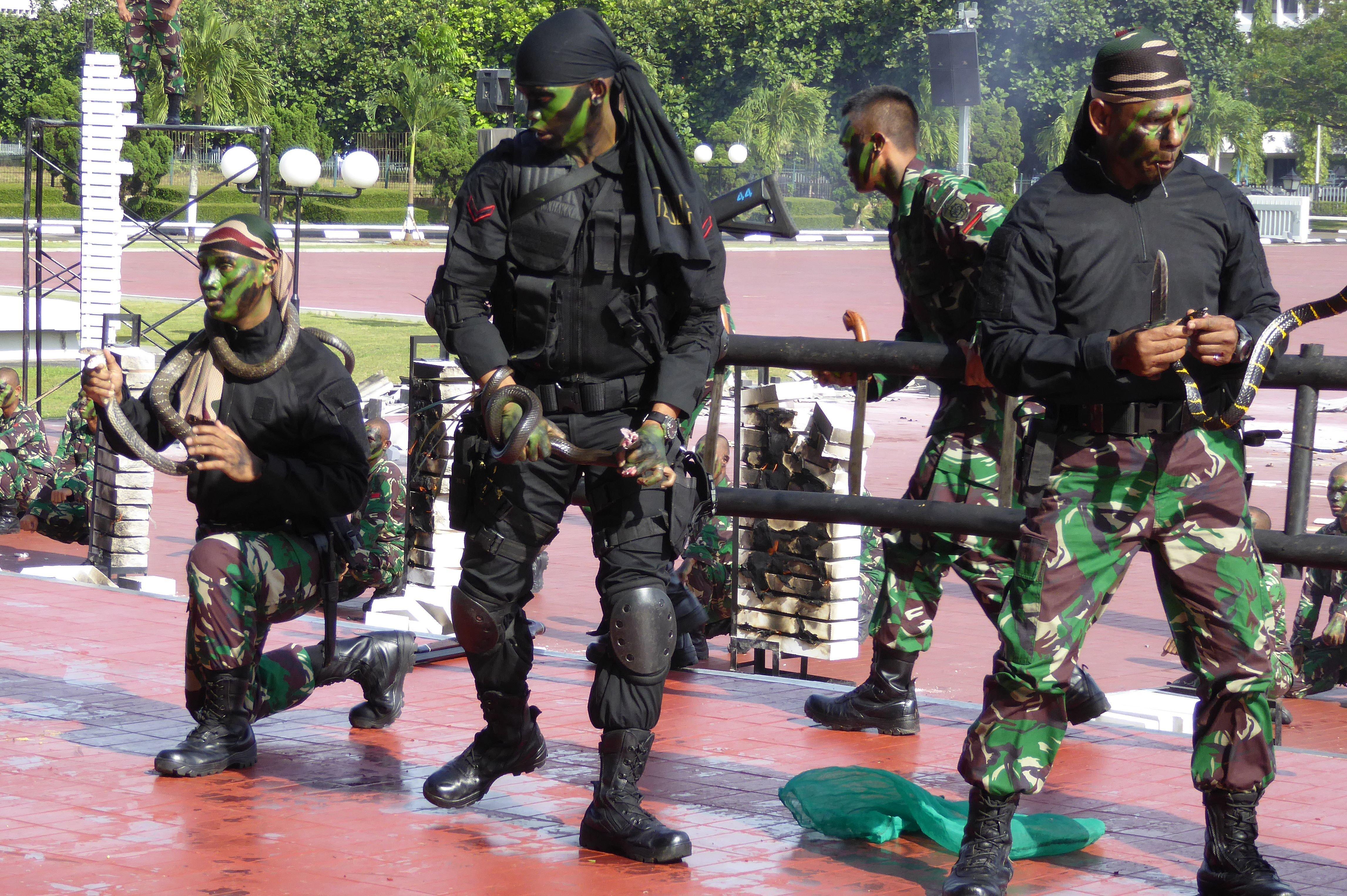 Ινδονησία: Στρατιώτες πίνουν αίμα φιδιού και ο υπουργός Άμυνας των ΗΠΑ