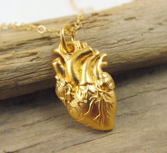 """Get it <a href=""""https://www.etsy.com/listing/183317047/gold-anatomical-heart-necklace-heart?ga_order=most_relevant&ga_sea"""