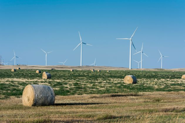 A view of theRim Rock Wind Farm, a 126-turbine operation located on a working ranch in Kevin,