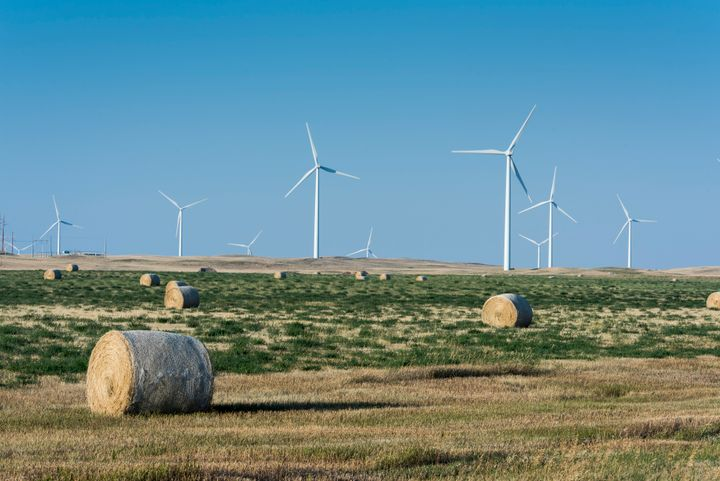 A view of the Rim Rock Wind Farm, a 126-turbine operation located on a working ranch in Kevin, Montana.