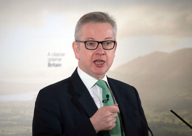 Former Education Secretary, now Environment Secretary, Michael