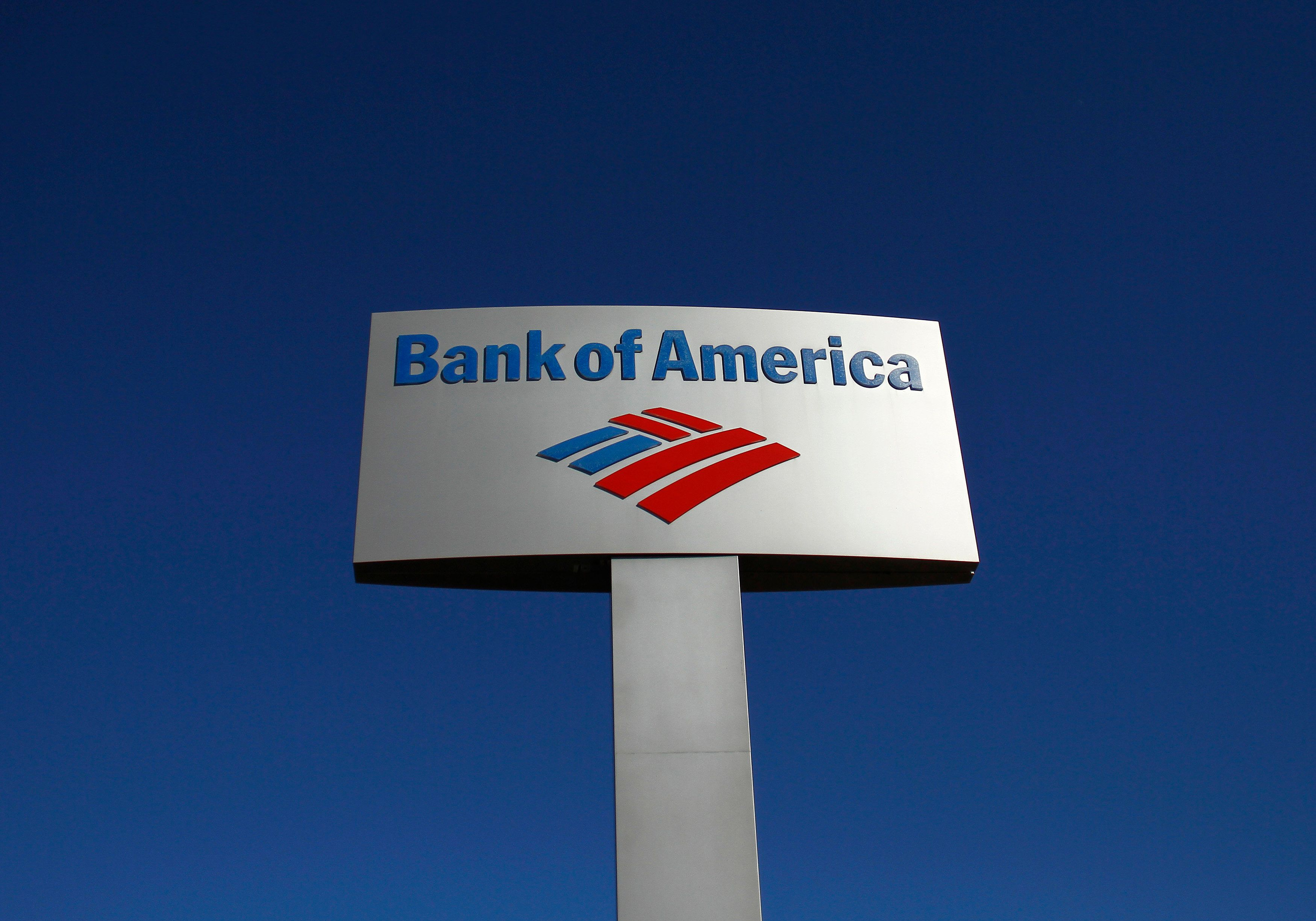 A Bank of America sign is displayed outside a branch in Tucson, Arizona January 21, 2011.   REUTERS/Joshua Lott/File Photo