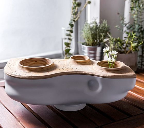 """Get it <a href=""""https://www.uncommongoods.com/product/living-composter"""" target=""""_blank"""">here</a>."""