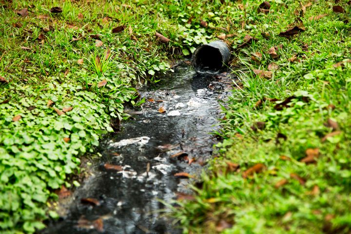 An open sewer runs through the backyard of a grouping of trailers in a community on the border of Lowndes County.