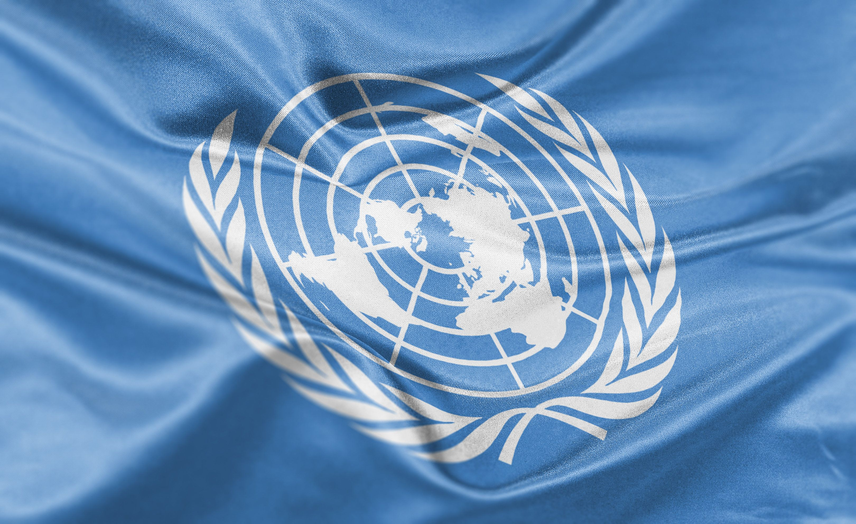 The U.N. has taken steps to address what some current and former employees say is a widespread culture...