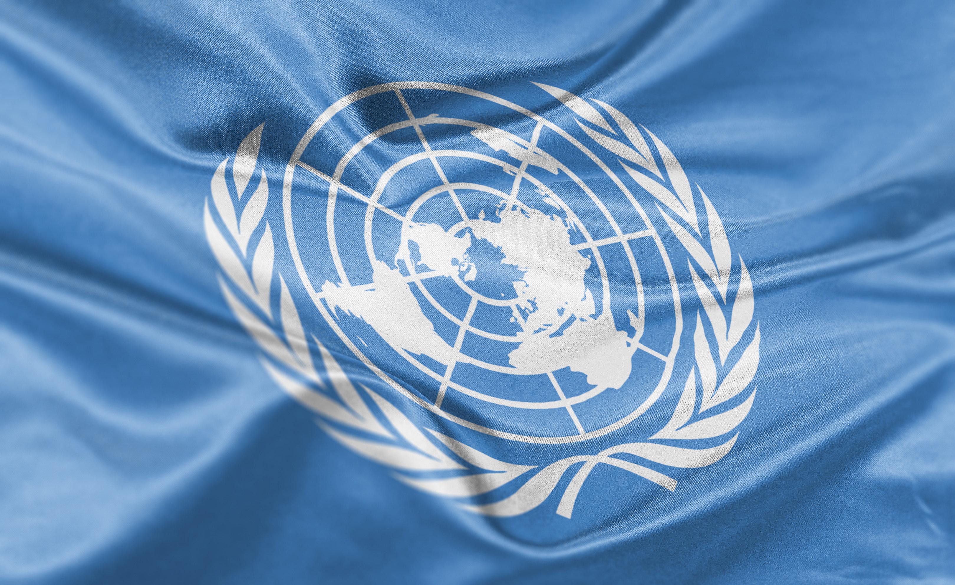 High resolution digital render of United Nations flag.