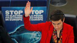 Στήριξη Ευρωπαίων Πρασίνων στις προσπάθειες επίλυσης του ζητήματος της ονομασίας της