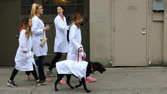 SEATTLE, WA - APRIL 22:  People head to a rally including a 'lab in a lab coat' named Rodger and his owner Cate Tambeaux (front holding leash) at the March for Science at Cal Anderson Park on April 22, 2017 in Seattle, Washington. The rally featured speakers and events advocating for science that upholds the common good and for political leaders and policy makers to enact evidence based policies in the public interest. (Photo by Karen Ducey/Getty Images)