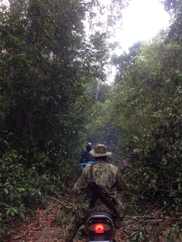 Members of the Prey Lang Community Network patrol the forest for illegal loggers.