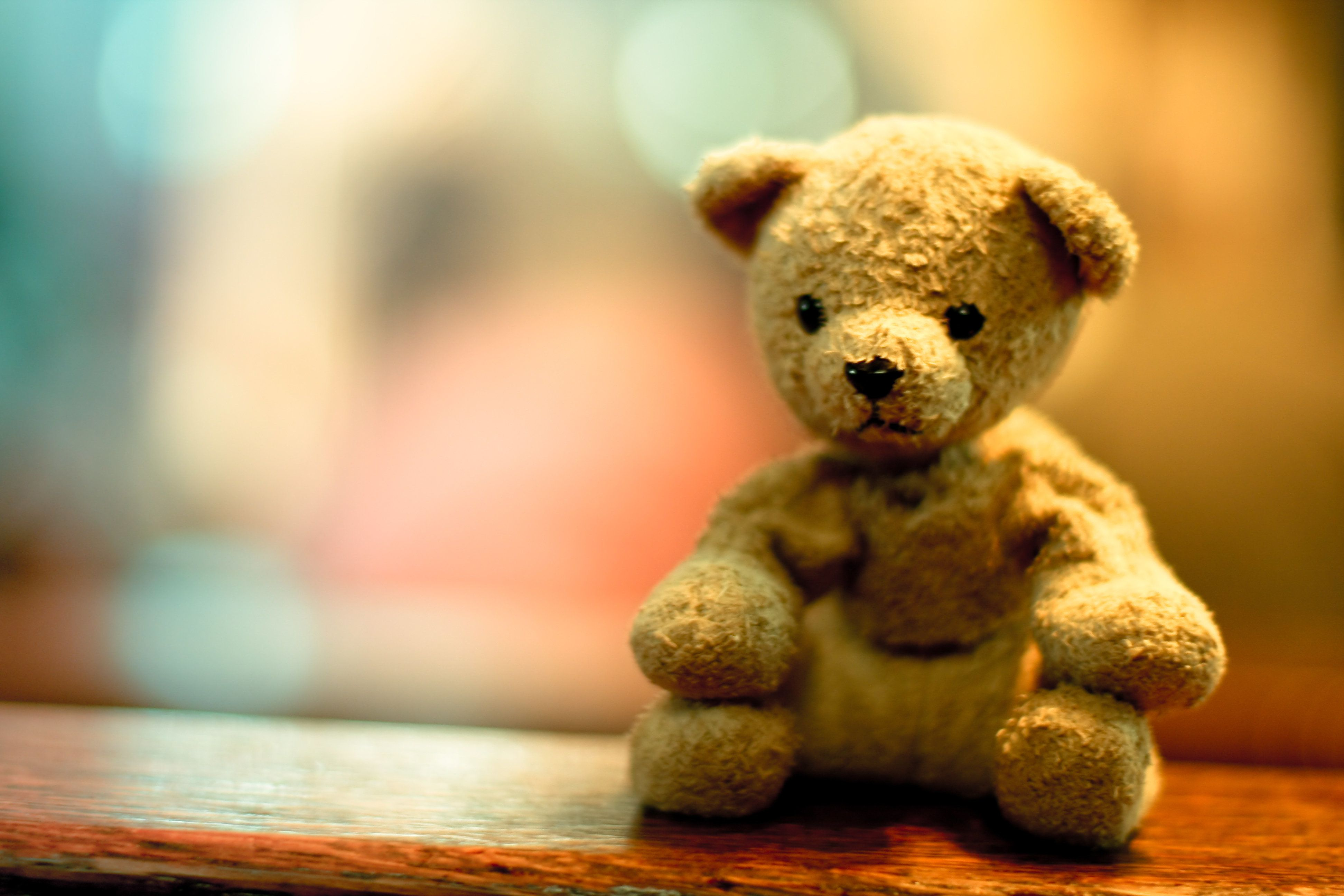 Teddy bears were so dubbed more than a century ago. Here's their story.