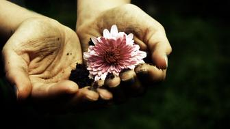 Hand holding a flower and mud.