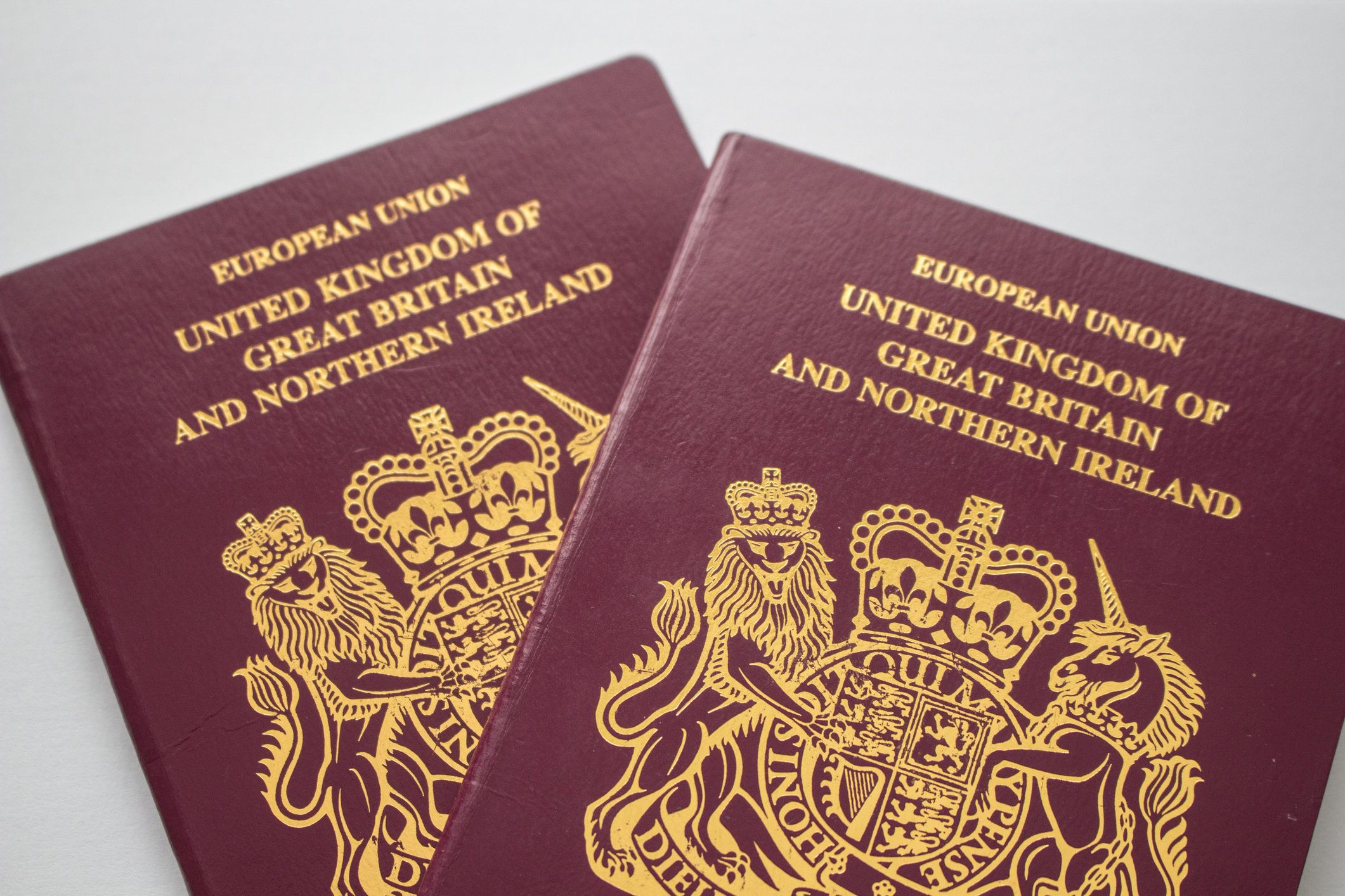 Everything You Need To Know About The Passport Renewal Cost