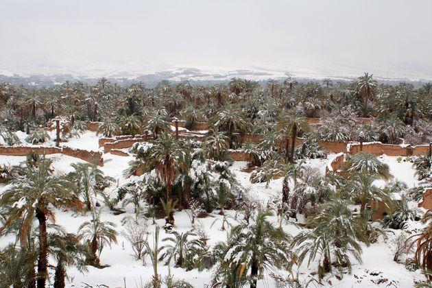 Μαρόκο: Ασυνήθιστες χιονοπτώσεις στην