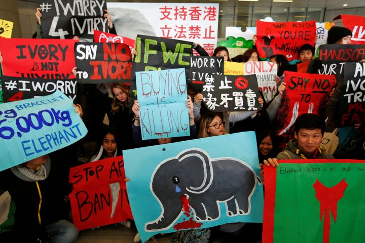 Hong Kong's Legislative Council voted almost unanimously to ban the ivory trade by 2021.