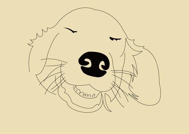이것은 개가