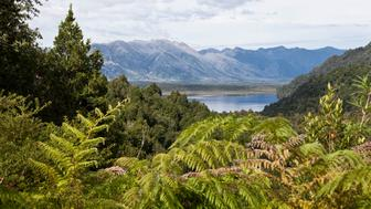Beautiful landscape at Pumalin park, Chile.