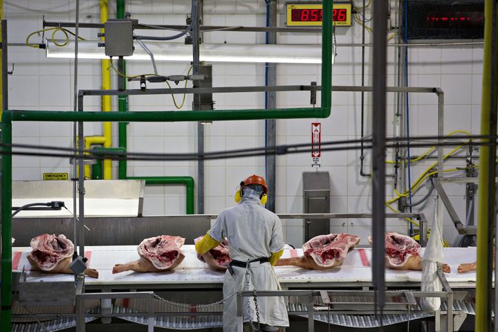 Activists worry that the proposed USDA rule could endanger workers and also raise food safety risks.